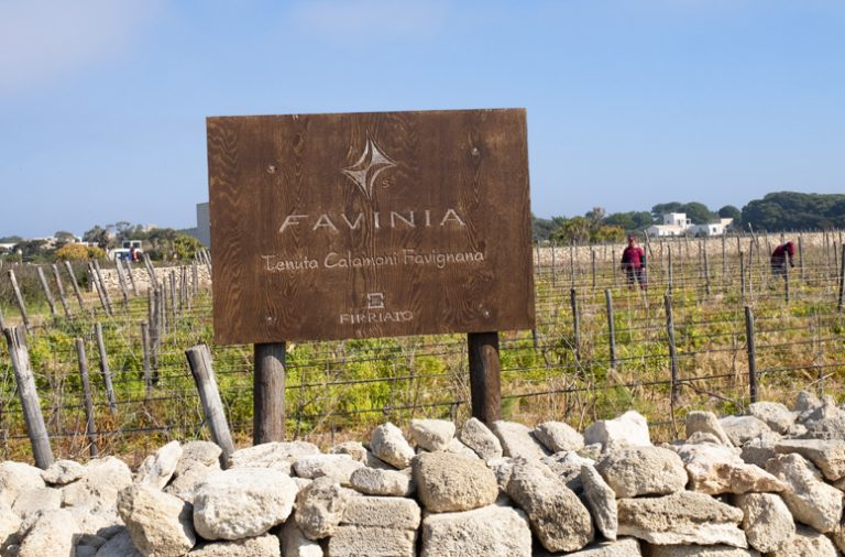 Firriato: the Terroir of Favignana island